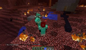 Grims in the nether